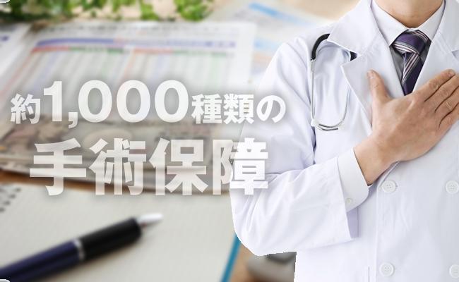 約1,000種類の手術を保障
